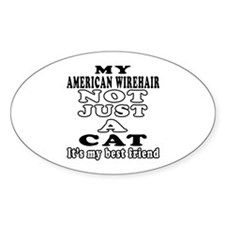 American Wirehair Cat Designs Decal