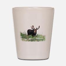 Minnesota Moose Shot Glass