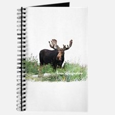 New Hampshire Moose Journal