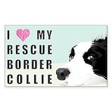 Border collie Single