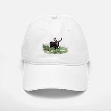 Maine Moose Baseball Baseball Cap