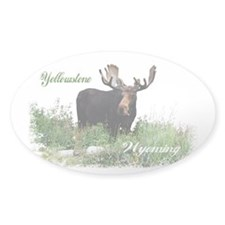 Yellowstone WY Moose Decal