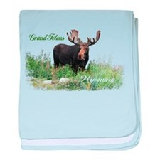 Grand Tetons WY Moose baby blanket