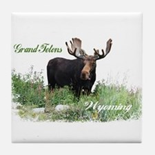 Grand Tetons WY Moose Tile Coaster