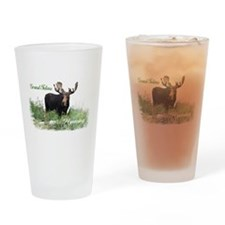 Grand Tetons WY Moose Drinking Glass