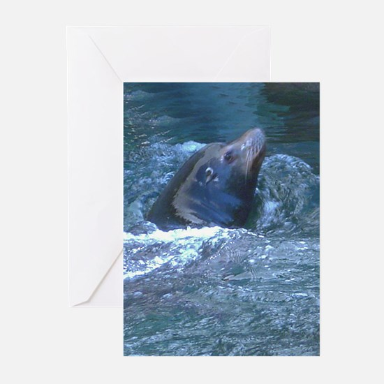 swimming sea lion Greeting Cards (Pk of 10)
