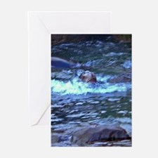 sea lion swimming Greeting Cards (Pk of 10)