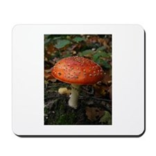 Red Toadstool Photo Mousepad