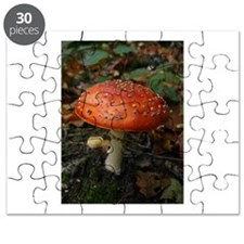 Red Toadstool Photo Puzzle