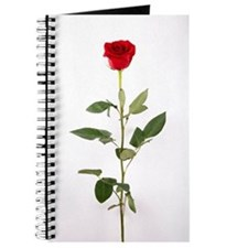 Single Red Long Stem Rose Journal