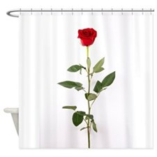 Single Red Long Stem Rose Shower Curtain