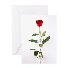 Single Red Long Stem Rose Greeting Card