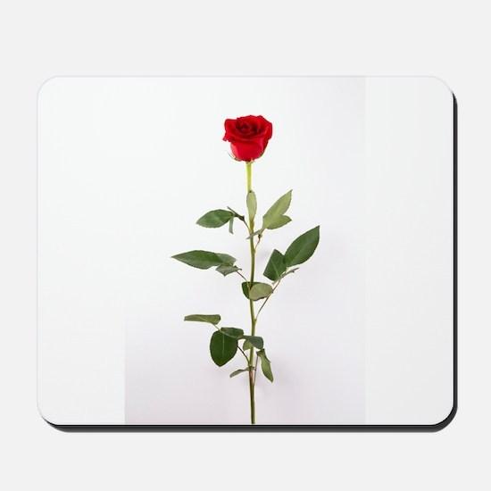 Single Red Long Stem Rose Mousepad