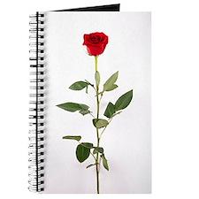 Single Red Long Stem Rose Journal