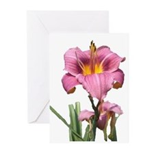 cut pink daylilly Greeting Cards (Pk of 10)