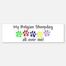 Belgian Sheepdog Walks Bumper Bumper Bumper Sticker