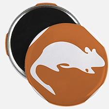 rodent / rat infestation Magnet