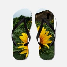 Farmhouse Sunflower Flip Flops
