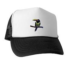 aracari Trucker Hat