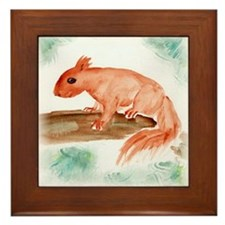 Red Squirrel Framed Tile