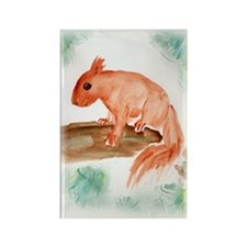 Red Squirrel Rectangle Magnet