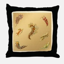 Haeckel Nudibranchia Throw Pillow