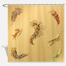 Haeckel Nudibranchia Shower Curtain