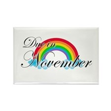 Due in November Rainbow Rectangle Magnet