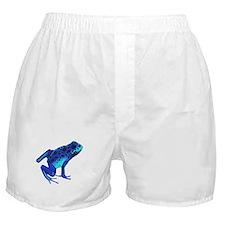 Blue Dart Frog Boxer Shorts