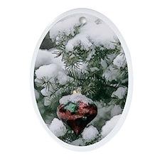 Snow bulb Oval Ornament