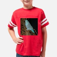 Cool Male parrotlet Youth Football Shirt