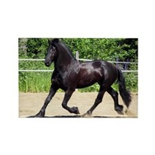 """Friesian 4"" Rectangle Magnet"