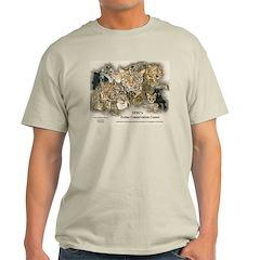 Wild Cats Ash Grey T-Shirt