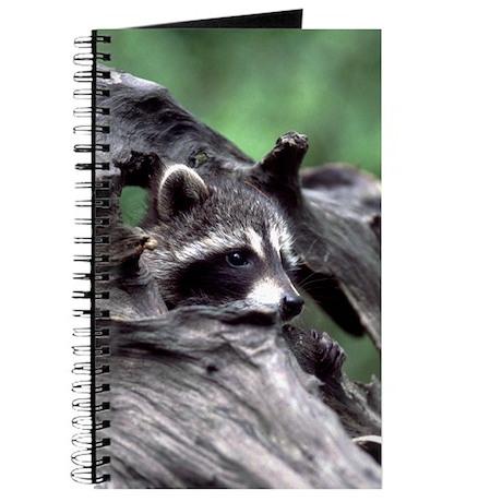 Raccoon Journal
