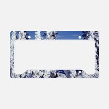 Snow Covered Trees License Plate Holder