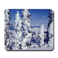 Snow Covered Trees Mousepad
