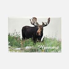 Wyoming Moose Rectangle Magnet