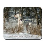 Hunting in the Snow Mousepad