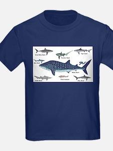 Shark Types T-Shirt