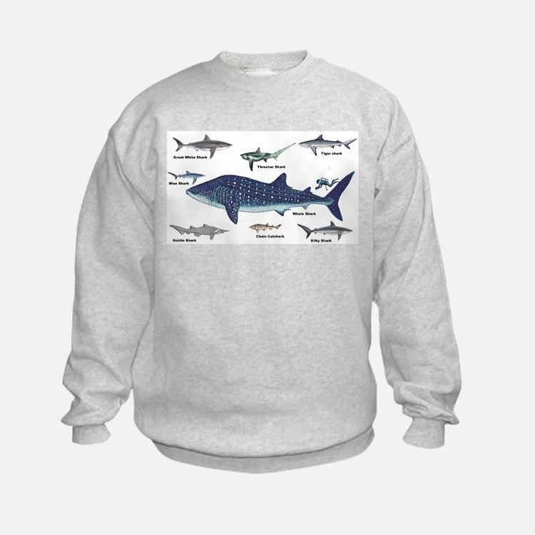 Shark Types Sweatshirt