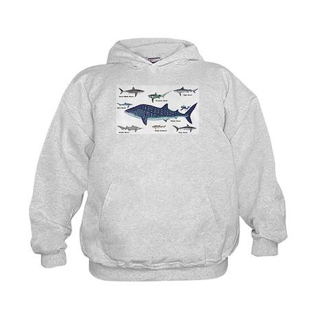 Shark Types Hoodie