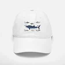 Shark Types Baseball Baseball Baseball Cap