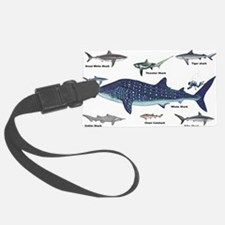 Shark Types Luggage Tag