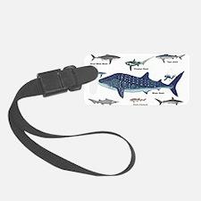 Shark Types Luggage Tag