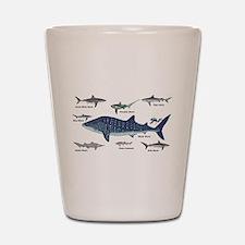 Shark Types Shot Glass