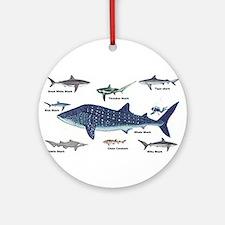 Shark Types Ornament (Round)