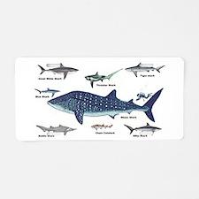 Shark Types Aluminum License Plate