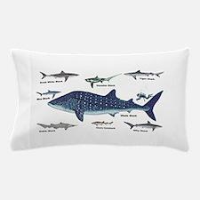 Shark Types Pillow Case