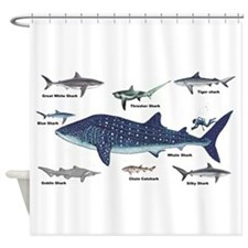 Shark Types Shower Curtain