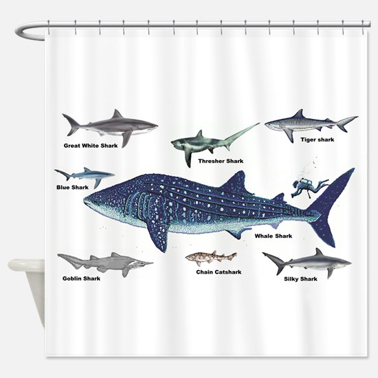 Shark Types Shower Curtain